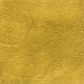 Patent Gold Leaf-Transfer